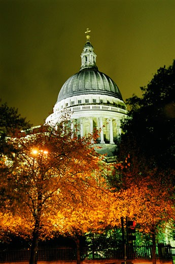 Stock Photo: 1783-17332 St Paul's Cathedral at night with trees, London, England