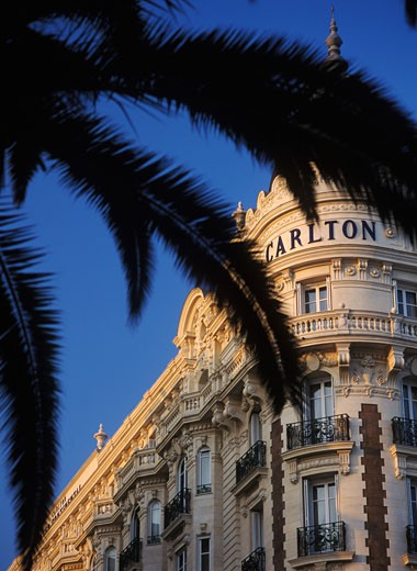 Stock Photo: 1783-1860 Looking through palm trees to The Carlton Hotel, Promenade de la Croisette, Cannes, France.