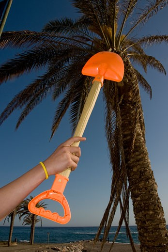 Person holding spade near palm tree on beach, Costa del Sol, Andalucia, Spain. : Stock Photo