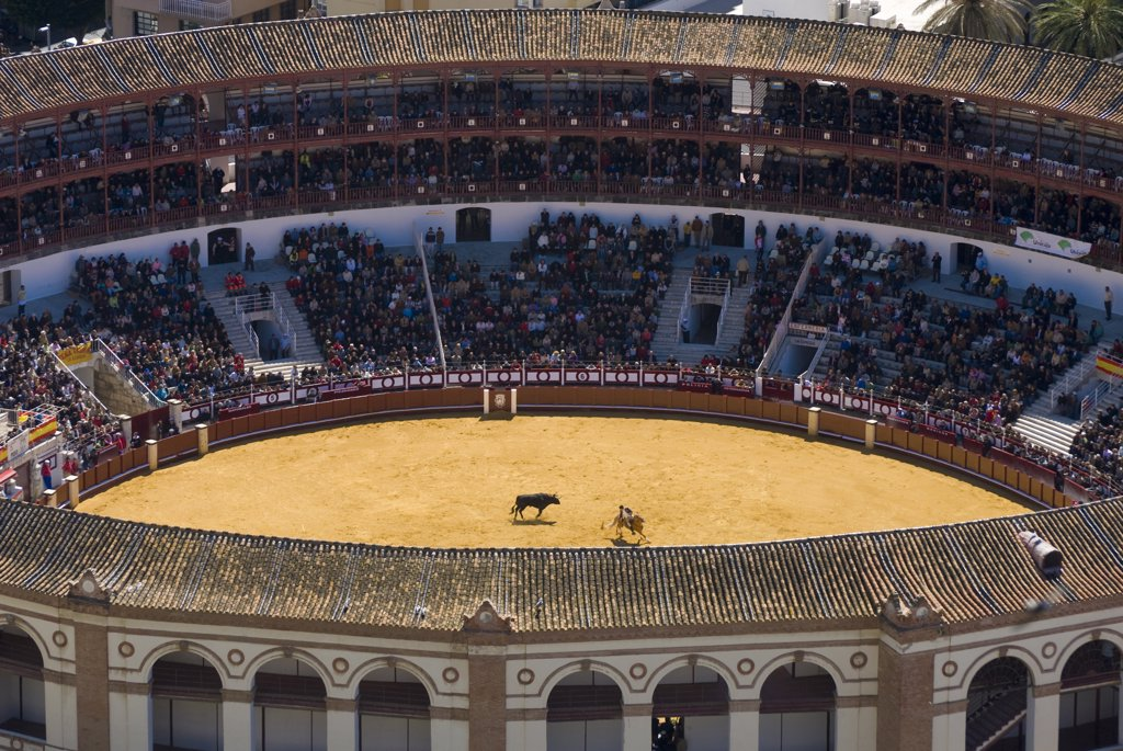 Elevated view of bullring, Malaga, Andalucia, Spain. : Stock Photo