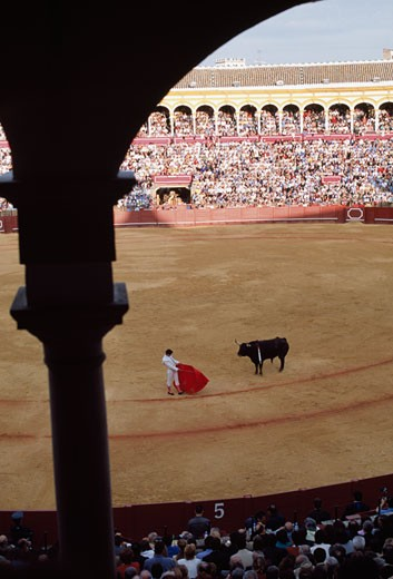Stock Photo: 1783-20010 Bull fight, Seville, Spain