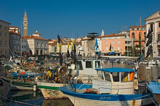 Fishing boats in the harbour., Piran, Primorska Region, Slovenia. : Stock Photo