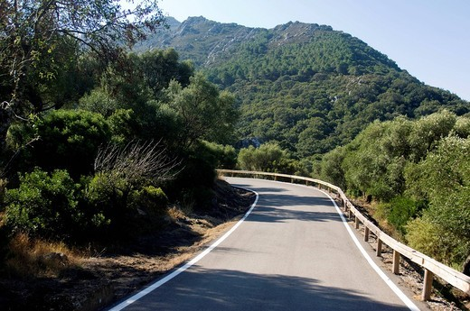 Curved empty road in lush mountainsFrance. Curved empty road in lush mountains : Stock Photo