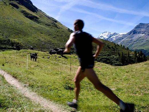 Stock Photo: 1783-31704 Runner in Swiss AlpssZinal, Val d´Anniviers, Valais, Switzerland. Runner in Swiss Alpss