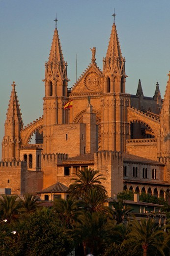 Detail of Cathedral of Santa Maria of Palma at duskPalma, Majorca, Spain. Detail of Cathedral of Santa Maria of Palma at dusk : Stock Photo