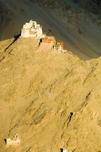 Namgyal Tsemo Gompa and fortJammu and Kashmir, India. Namgyal Tsemo Gompa and fort : Stock Photo