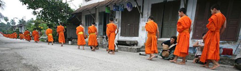Novice monks collecting food donations, Luang Prabang, Northern Laos : Stock Photo