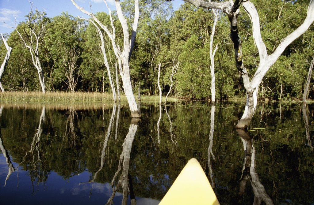 Stock Photo: 1783-9283 Yellow boat in Lake Bennet, Northern Territory, Australia