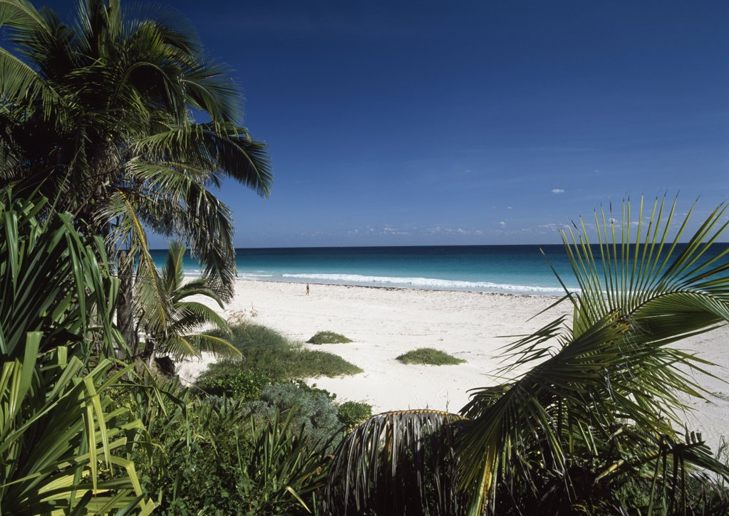 Stock Photo: 1783-9788 Pink Sand Beach, Harbour Island, Bahamas.