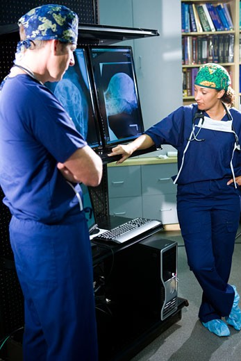 Two veterinarians looking at animal x-rays : Stock Photo