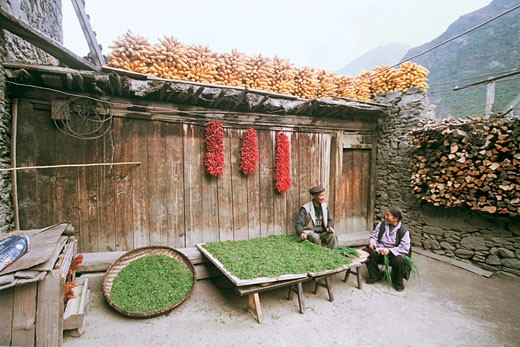 Couple sitting in small yard preparing vegetables in Ganbao Zang minority village, Li County, Aba State, Sichuan Province of People's Republic of China, : Stock Photo