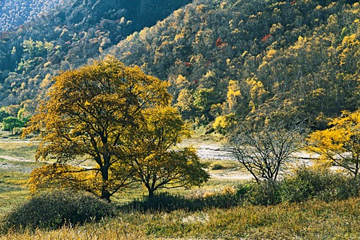 Stock Photo: 1787R-2131 Laozhang Valley, Guyuan County, Hebei Province of People's Republic of China