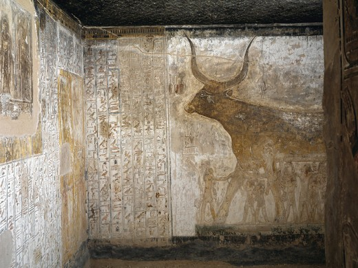 Egypt, Thebes, Luxor, Valley of the Kings, Tomb of Seti I, mural painting of sacred cow, in Starry sky vault chamber from nineteenth dynasty : Stock Photo
