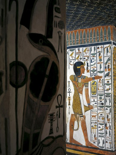 Stock Photo: 1788-10579 Egypt, Thebes, Luxor, Valley of the Queens, Tomb of Nefertari, Burial chamber, Mural paintings, 'Iun-mutef' Horus