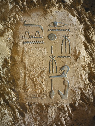 Egypt, Thebes, Luxor, Sheikh 'Abd al-Qurna, Tomb of high steward architect Senenmut, wall decoration : Stock Photo