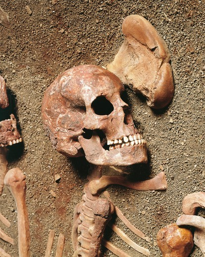 Italy, Liguria Region, Balzi Rossi, Barma Grande Cave, triple burial, Cro-Magnon type skeleton detail : Stock Photo