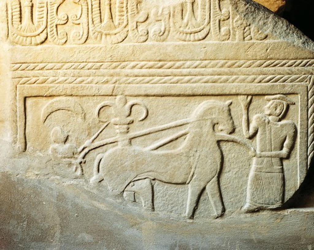 Zannoni stele, detail : Stock Photo