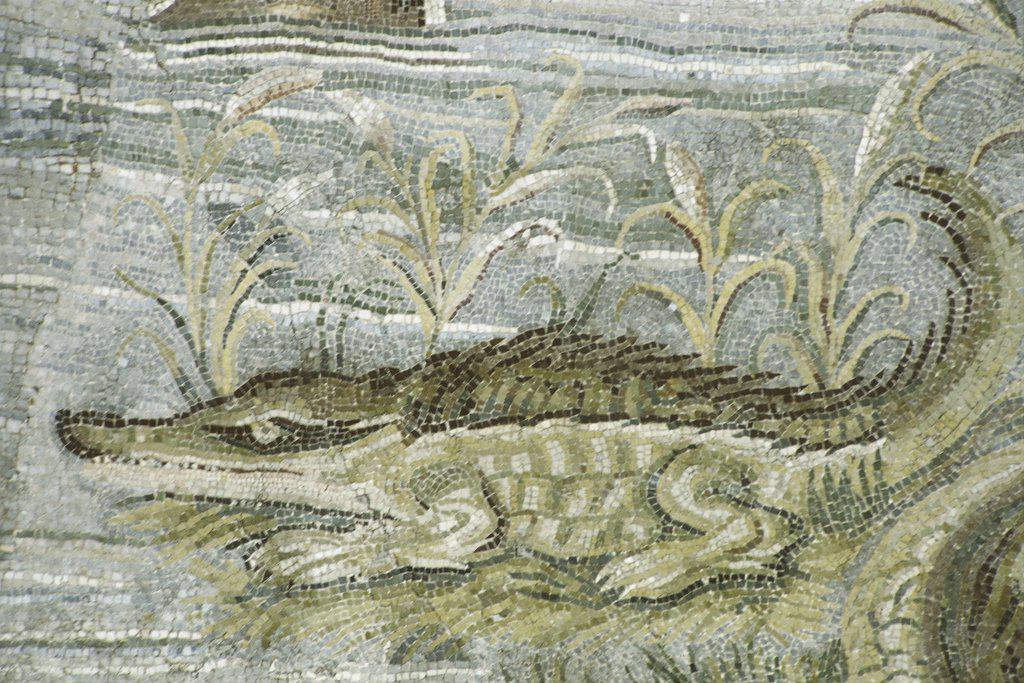 Stock Photo: 1788-1630 Italy - Latium region - Palestrina (Rome Province) - 1st century b.C. - Sillian age. Crocodile, mosaic