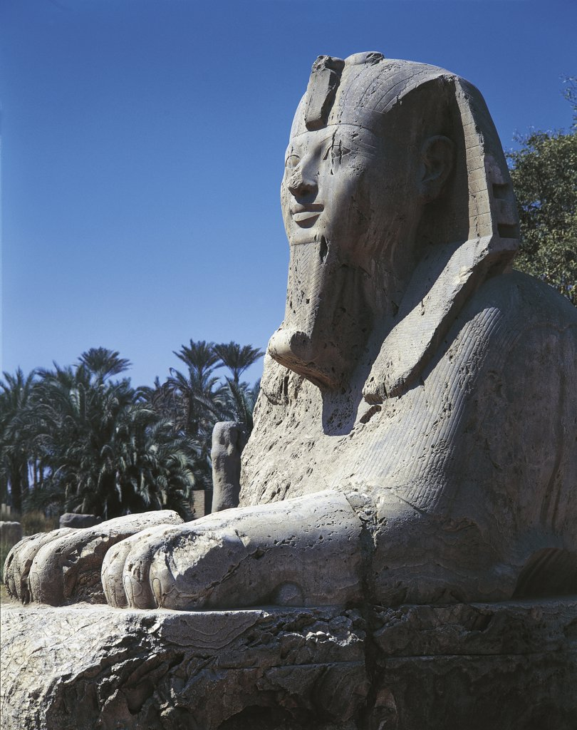 Stock Photo: 1788-1716 Egypt - Cairo - Ancient Memphis (UNESCO World Heritage List, 1979). Alabaster sphinx. Amenophis II, 18th Dynasty (1391-1353 BC)