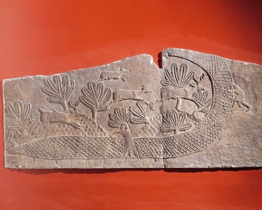 Stock Photo: 1788-18064 Scene of Ashurbanipal hunting with deers trapped in the net, Relief from Royal Palaces of Nineveh, circa 645 B.C.
