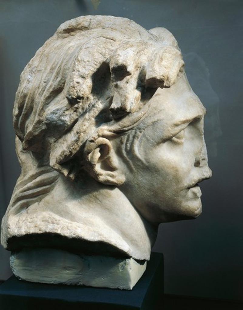 Stock Photo: 1788-19384 Marble head of Gaul