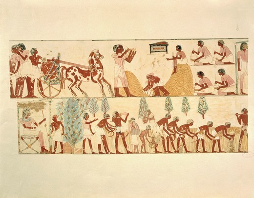 "Plate, farm work, wheat harvest and scribes recording amount of crop, replica of fresco from Thebes, Tomb of Menna by Nina M. Davies (1881-1965) from """"Ancient Egyptian Painting"""", Chicago, 1936 : Stock Photo"