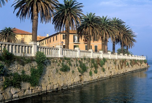Stock Photo: 1788-20438 Italy, Tuscany, Maremma, Orbetello, Etruscan wall with palm trees