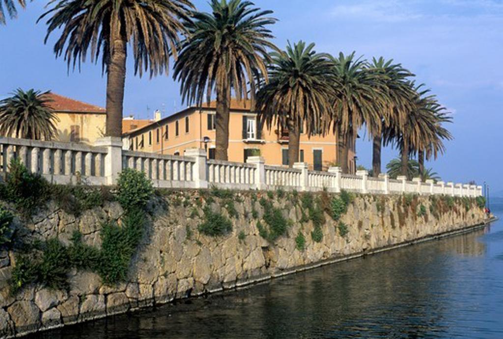 Italy, Tuscany, Maremma, Orbetello, Etruscan wall with palm trees : Stock Photo