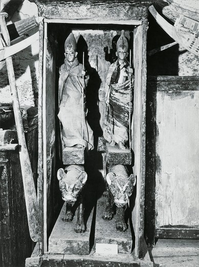 Stock Photo: 1788-23582 Egypt, Valley of the Kings, The discovery of the tomb of Pharaoh Tutankhamun (or Tutankhamen, circa 1340-1323 B.C.), ritual statuettes in their cases, 1922, vintage photograph