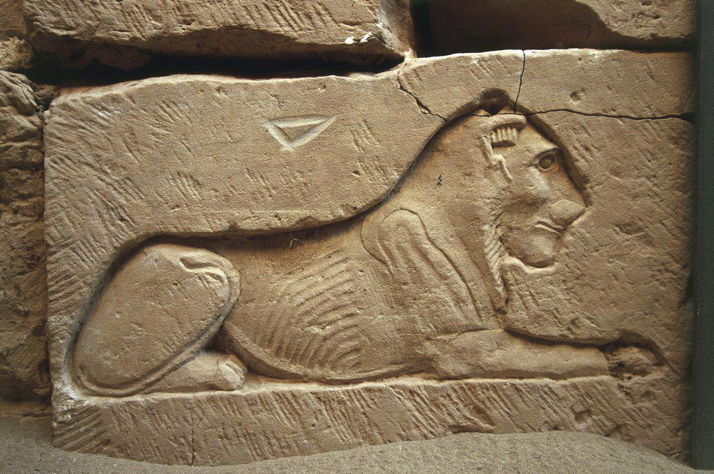 Egypt. Libyan Desert. Al-Dakhilah (Dakhla) Oasis. Ezbet Bashendi. Tomb of Kitines, 1st century BC. Sunken relief of lion : Stock Photo