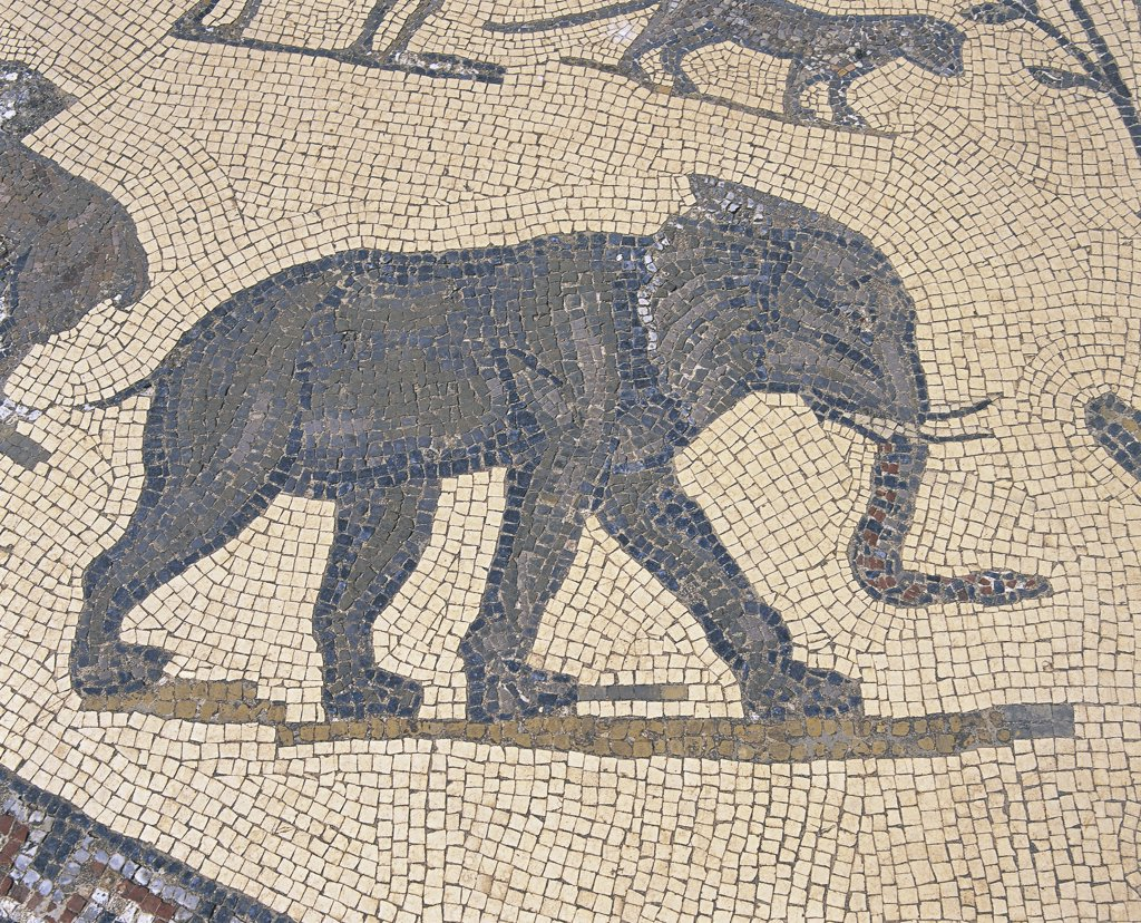 Morocco - Meknes-El Menzeh - 3rd century A.D. Ancient city of Volubilis, settled by Romans since 1st century A.D. (UNESCO World Heritage List, 1997). House of Orpheus, Orpheus surrounded by animals, detail of an elephant. Mosaic : Stock Photo