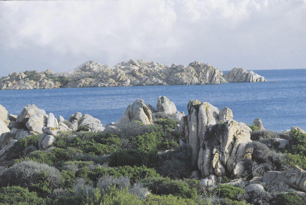 Italy - Sardinia Region - La Maddalena Archipelago National Park - Island of La Maddalena : Stock Photo
