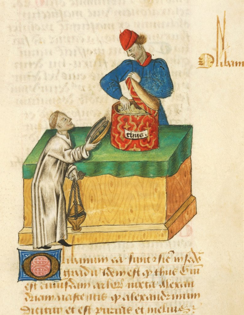 Stock Photo: 1788-34277 The thyme seller, miniature from Tractatus de herbis, Latin manuscript by Dioscorides, Est 28 e M 59 folio 104 recto, France 15th Century.