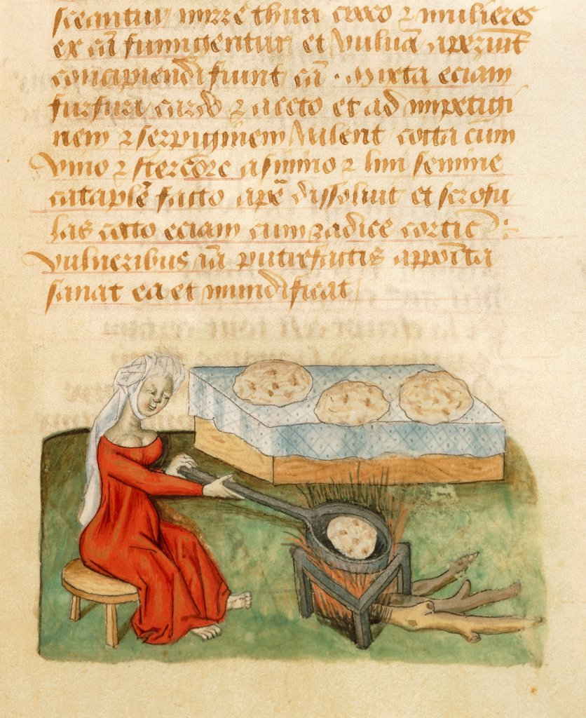 Properties of the sugar cane, deatil of baking sugar bread, miniature from Tractatus de herbis, Latin manuscript by Dioscorides, Est 28 e M 59 folio 142 recto, France 15th Century. : Stock Photo