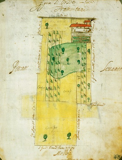 Stock Photo: 1788-36064 Cartography, Italy, 17th century. Morghengo, Novara, farm homesteads and fields. Drawing by Cabreo Guarischelli, 1611.
