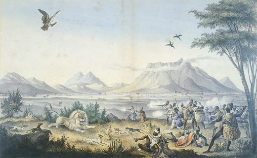 Stock Photo: 1788-36491 A lion hunt in Damaraland by Sir James E. Alexander, South Africa 19th century.