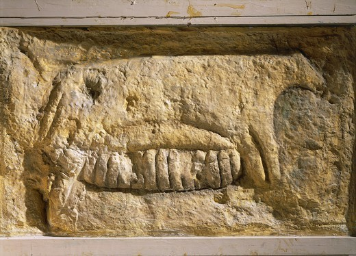 Prehistory, Malta, Neolithic. Zoomorphic relief depicting a sow feeding her piglets. From Tarxien megalithic temple. : Stock Photo