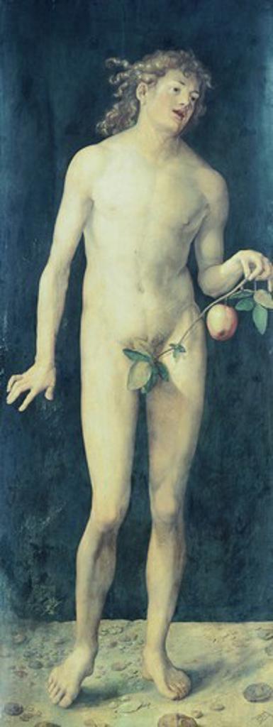Stock Photo: 1788-42303 Adam, 1507, by Albrecht Durer (1471-1528), oil on canvas, 209x81 cm.