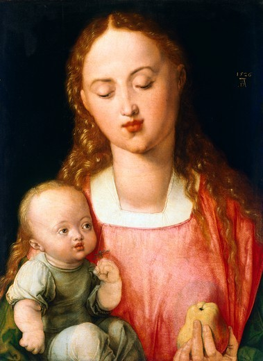 Stock Photo: 1788-45393 Madonna and Child, 1526, by Albrecht Durer (1471-1528), oil on panel, 43x31 cm.