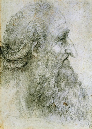 Stock Photo: 1788-45877 Head of an elderly man seen in profile, by Leonardo da Vinci (1452-1519), drawing. 12499.