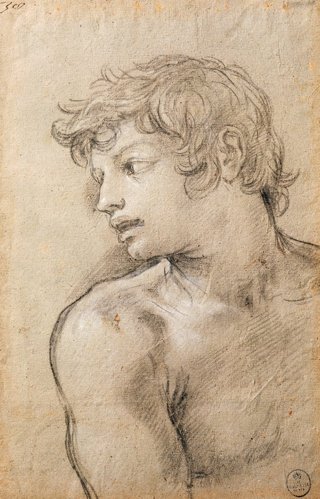 Figure of a Young Man. Study for the Golden Age, by Pietro da Cortona (1596-1669), drawing. : Stock Photo