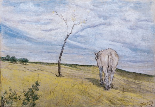 White Horse, by Giovanni Fattori (1825-1908). : Stock Photo