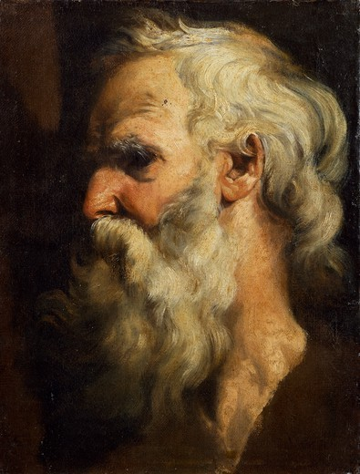 Head of an old man, by Giovanni Battista Monti (1797-1823), oil on canvas, 47x35 cm. : Stock Photo