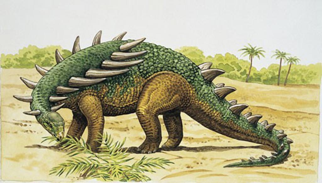Dinosaur eating leaves : Stock Photo