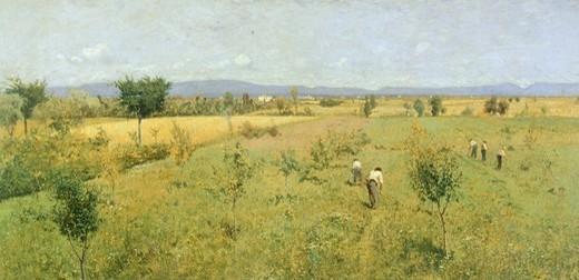 Golden harvest, 1883, by Guglierimo Ciardi (1842-1917). : Stock Photo