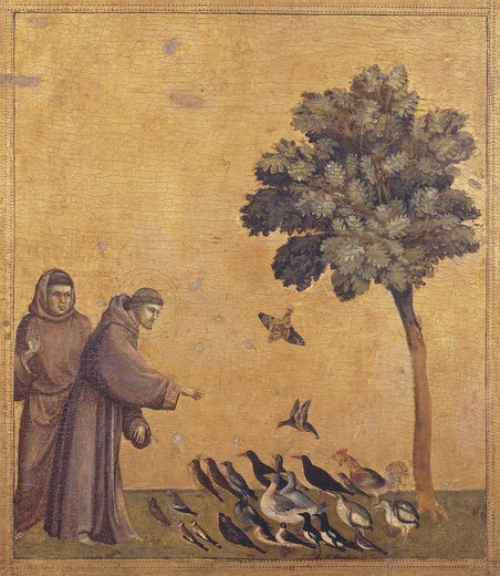 St Francis preaching to birds, detail from the predella of the Stigmata of St Francis, ca 1300, by Giotto (1267-1337), tempera on wood, 313x163 cm. : Stock Photo