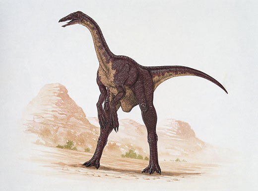 Close-up of a deinocheirus dinosaur standing on a landscape (Deinocheirus mirificus) : Stock Photo