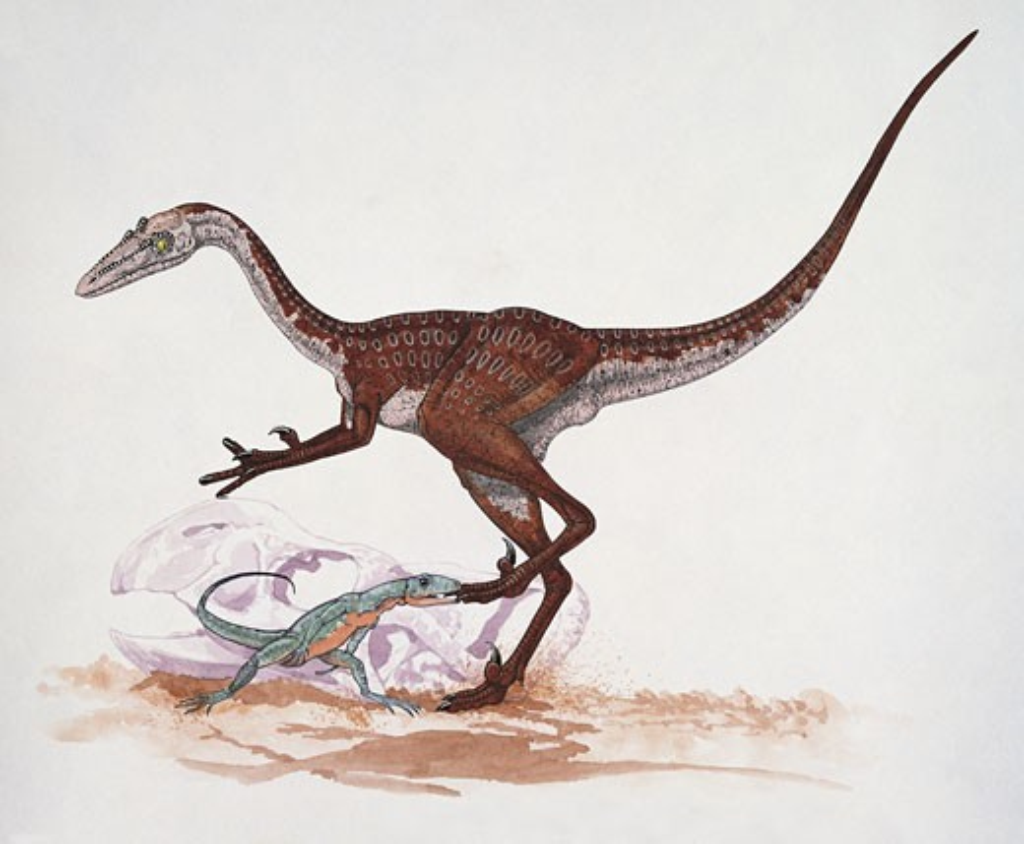 Dinosaur biting another dinosaur : Stock Photo