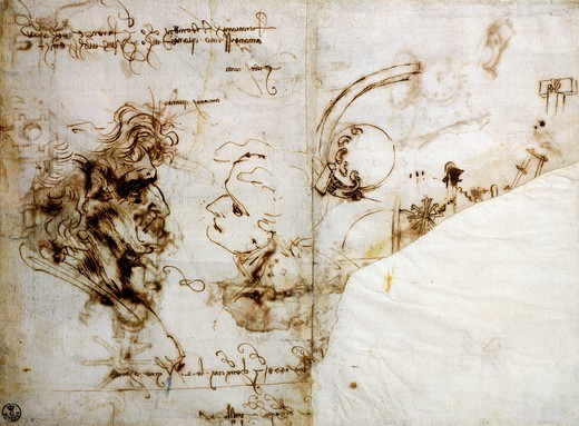 Stock Photo: 1788-54966 Study of Male Profiles, by Leonardo da Vinci (1452-1519), drawing 446E recto.