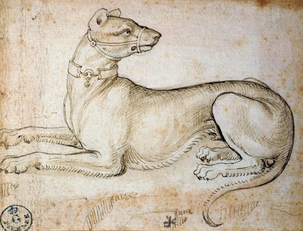 Stock Photo: 1788-54976 Study of an imaginary animal, by Leonardo da Vinci (1452-1519), drawing 753 Orn.